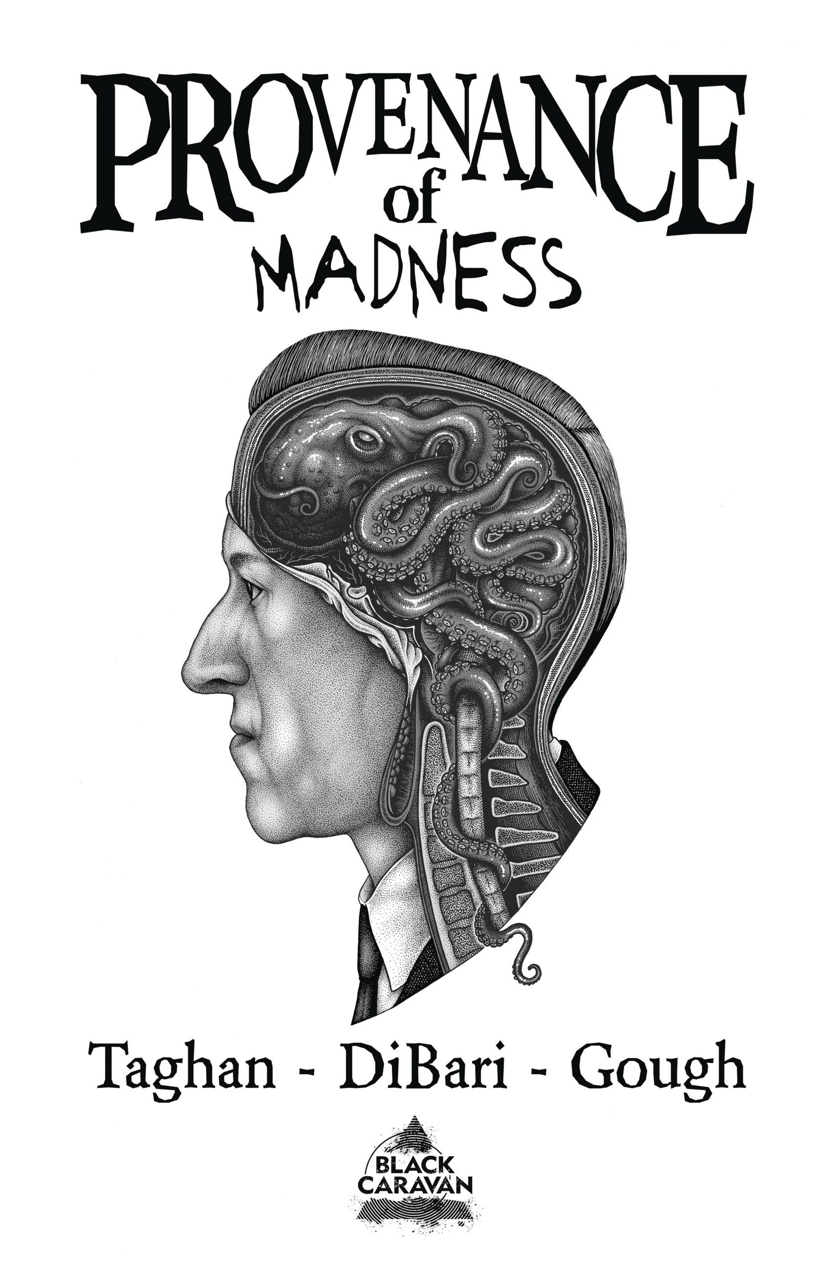 Provenance Of Madness By Taghan, DiBari, Gough